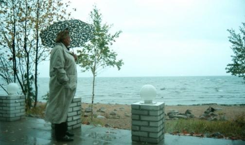 Счетная палата: По вине Фонда соцстрахования 16 тысяч россиян остались без санатория