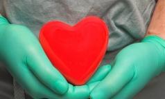 Петербургский врач уверен, что готовый закон о трансплантации заработает нескоро