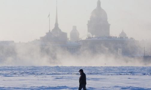 Медики помогут экологам оценить риски для здоровья петербуржцев