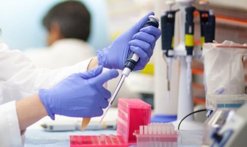 НИИ гриппа будет готовить будущих сотрудников в Институте физики, нанотехнологий и телекоммуникаций