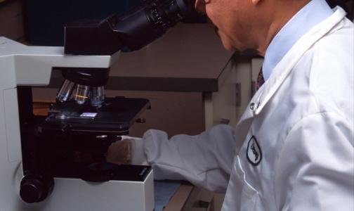 В кабинетах врачей можно заразиться смертоносной бактерией