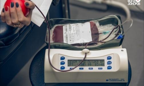 ВЦИОМ: Число россиян, опасающихся заразиться опасными инфекциями при сдаче крови, уменьшается