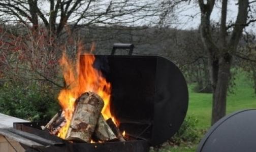 Петербужцы перестали «играть с огнем» на пикниках