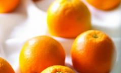Апельсиновый сок оказался полезен для памяти