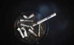 Кафе и рестораны смогут стать клубами для курильщиков