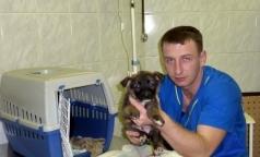 Осужденный из-за кетамина петербургский ветеринар освобожден досрочно