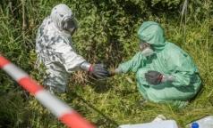Гринпис: Стоки из «Красного Бора» угрожают здоровью петербуржцев