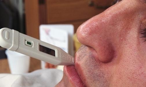 За неделю 16 петербуржцев попали в больницу с клещевыми инфекциями
