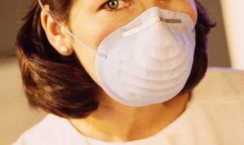 Госпитализирован 250-й петербуржец с клещевой инфекцией