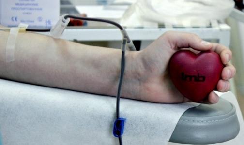 Двум клиникам Петербурга не хватает донорской крови