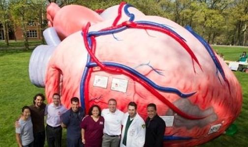 В Юсуповском саду покажут 7-метровое сердце и очки-симуляторы опьянения
