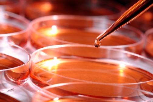 Микробиология в ЛПУ: собственные лабораторные возможности или аутсорсинг