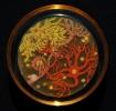 Ученые нарисовали картины, использовав бактерии вместо краски: Фоторепортаж