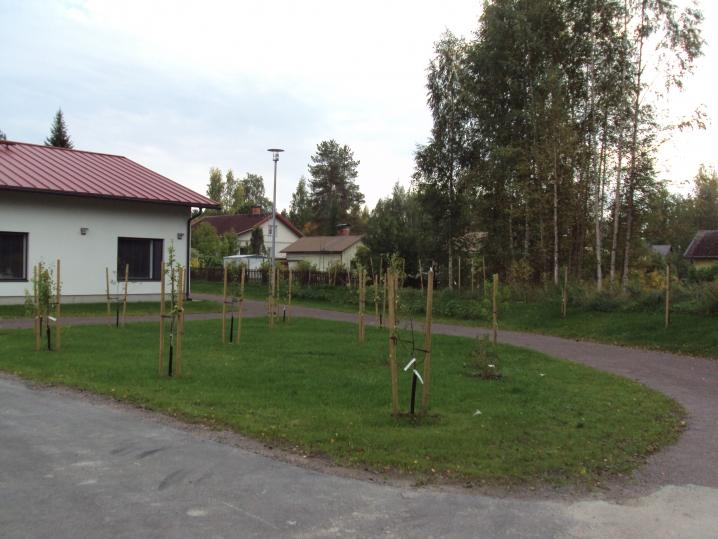 В Финляндии инвалидов учат самостоятельно справляться с жизнью