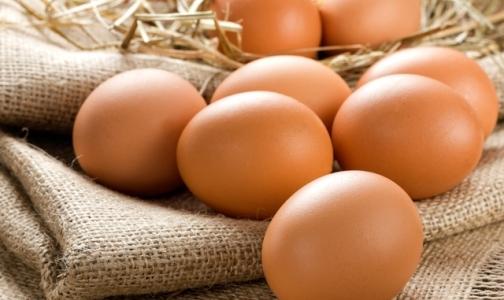 В Петербурге выбрали самые полезные яйца