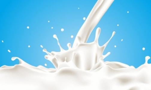 В петербургских магазинах продают разбавленное водой молоко