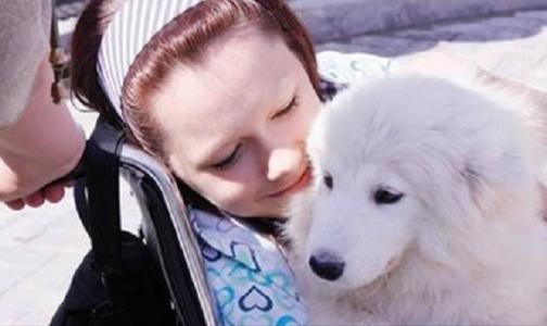 К Новому Году петербуржцы могут исполнить мечты тяжело больных детей