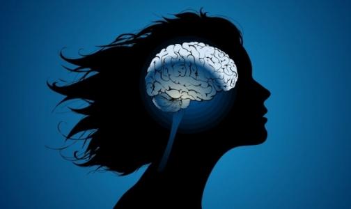 Ученые выяснили, есть ли различия между мужским и женским мозгом