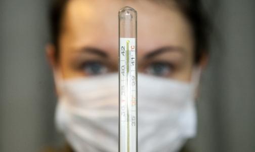 Эпидемия гриппа-2016 в Петербурге побила рекорды пандемии-2009