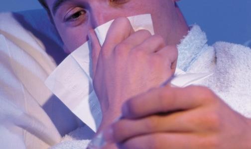 От гриппа умерли 11 петербуржцев, пик заболеваемости ждут на следующей неделе