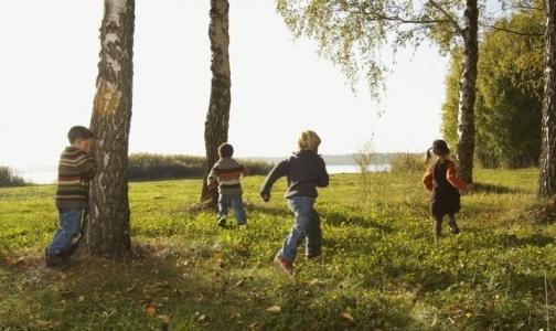 В Ленобласти третий ребенок заболел клещевым энцефалитом