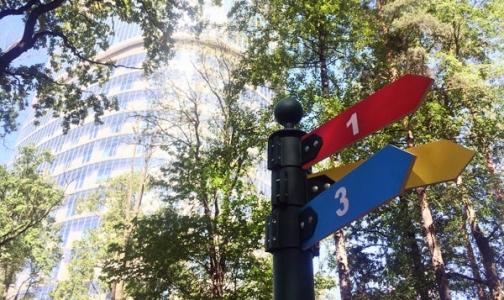 В Удельном парке появились маршруты для прогулок от врачей центра им. Алмазова
