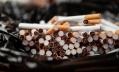 Большинство курильщиков не видят пользы в отказе от брендирования сигарет