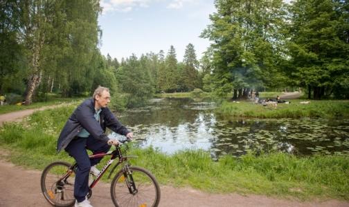 Названы районы Ленобласти с самым чистым воздухом