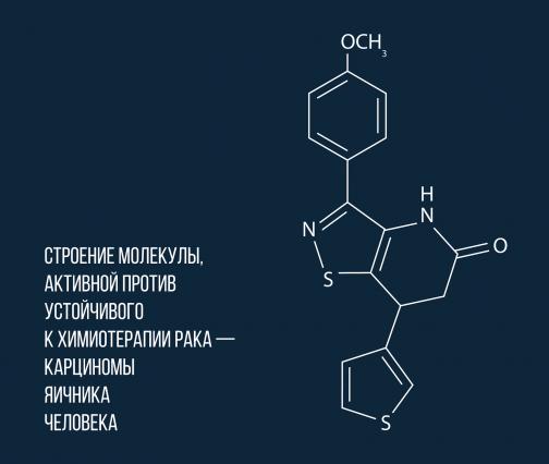 В России открыли молекулу для борьбы с неуязвимым раком