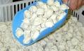 Петербуржцам продают пельмени с костями, хрящами, соей и крахмалом
