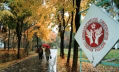 Как развивать медицинский туризм в Петербурге, когда пациентов негде лечить и негде селить