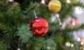 Петербуржцам рекомендуют нюхать елочные игрушки перед покупкой