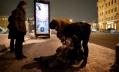 Более 2,5 тысяч петербуржцев, пострадавших от гололеда, вызывали «Скорую помощь»