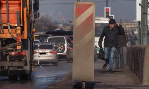 В Петербурге начался сезон пыльных бурь