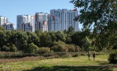 В Петербурге зарегистрированы первые случаи клещевого энцефалита