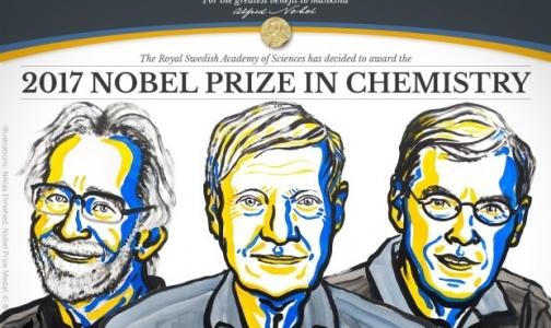 Нобелевскую премию по химии вручили за криоэлектронную микроскопию