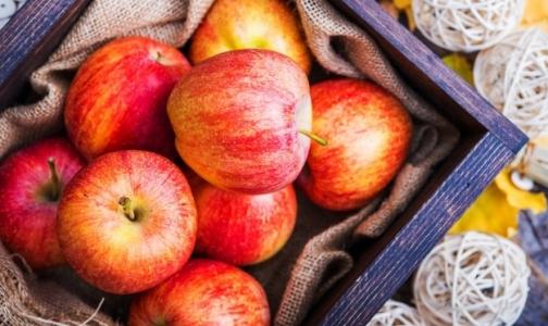 Эксперты: Многие люди заблуждаются относительно пользы яблок