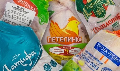 Эксперты рассказали, каких цыплят «накачивают» антибиотиками и «инъекциями для веса»