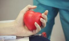 Пациентам Первого меда после трансплантации костного мозга срочно нужна донорская кровь