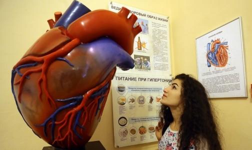 Петербуржцев бесплатно защищают от внезапной смерти с помощью устройств нового поколения