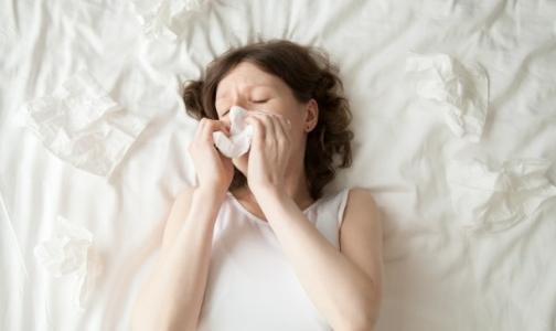 В начале года грипп и ОРВИ уложили на больничную койку около двух сотен петербуржцев
