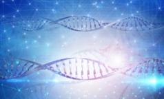 Генетики СПбГУ и врачи помогли семье с редкой патологией родить здорового ребенка