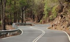 Смольный будет вести реестр безопасных лагерей и туристских маршрутов для детей