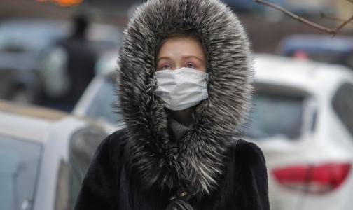 В Петербурге из-за гриппа на карантин закрыли 5 классов и 8 детсадовских групп