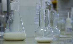 В Петербурге проверили молоко. Почти половина образцов оказалась фальшивкой