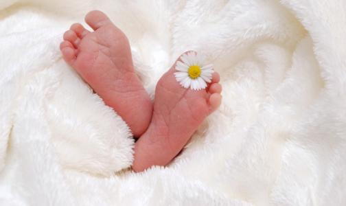 В мае Петербург «выдал» максимум рождений и минимум смертей с начала года