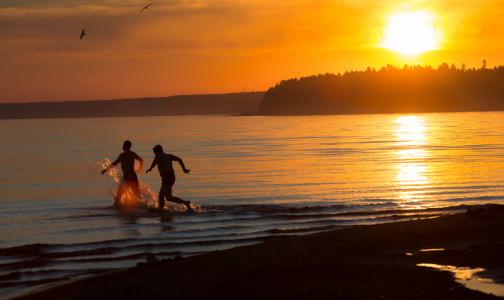 В Петербурге только два пляжа эпидемиологи признали безопасными для купания