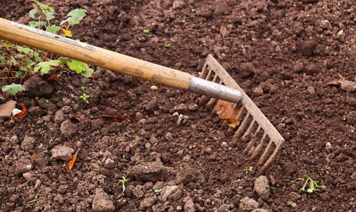 Огородный спорт: как на даче укрепить свое тело и не подорвать здоровье