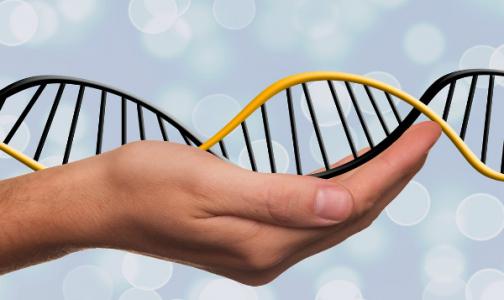 Сбой на генном уровне. Что мы должны о нём знать