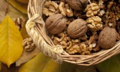 Ученые выяснили, что любовь к орехам помогает не толстеть